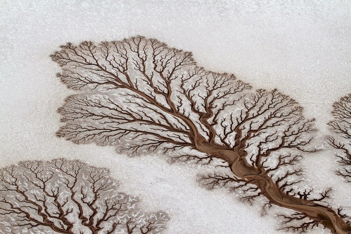 National-Geographic Nature Shots