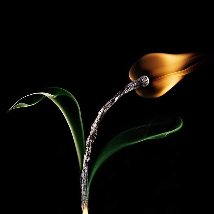 Burning Matche Art by Stanislav Aristov