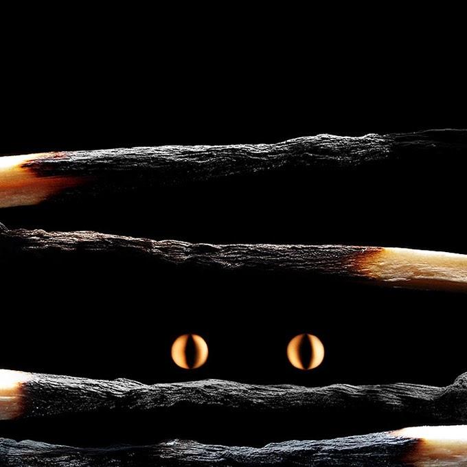 Cool Burning Matche Art by Stanislav Aristov